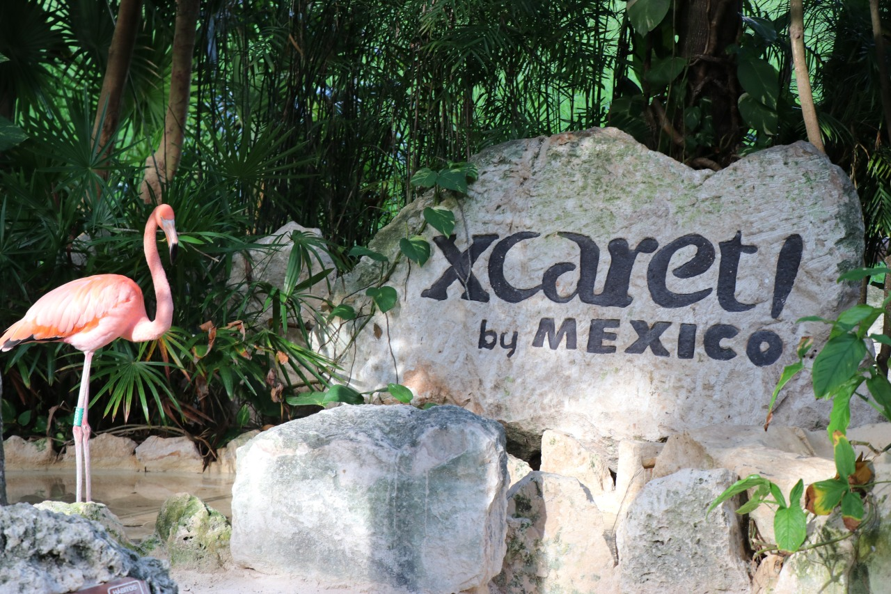 Protected: Hotel Xcaret andPark